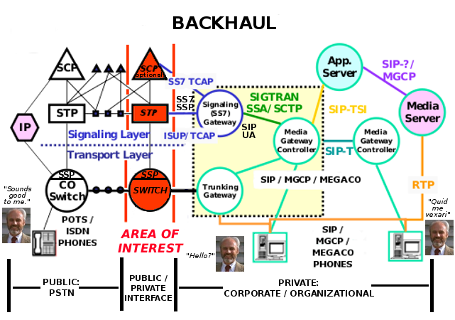 Backhaul / Local Carrier Bypass